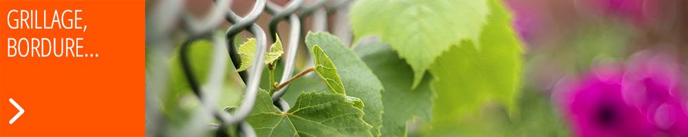 Grillage, treillis, occultation : délimitez votre jardin tout en l'habillant