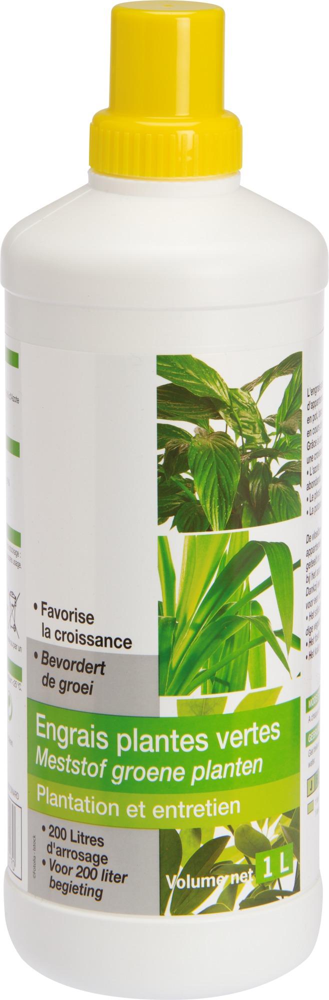 Engrais plantes vertes liquide Florendi - Bouteille 1 L