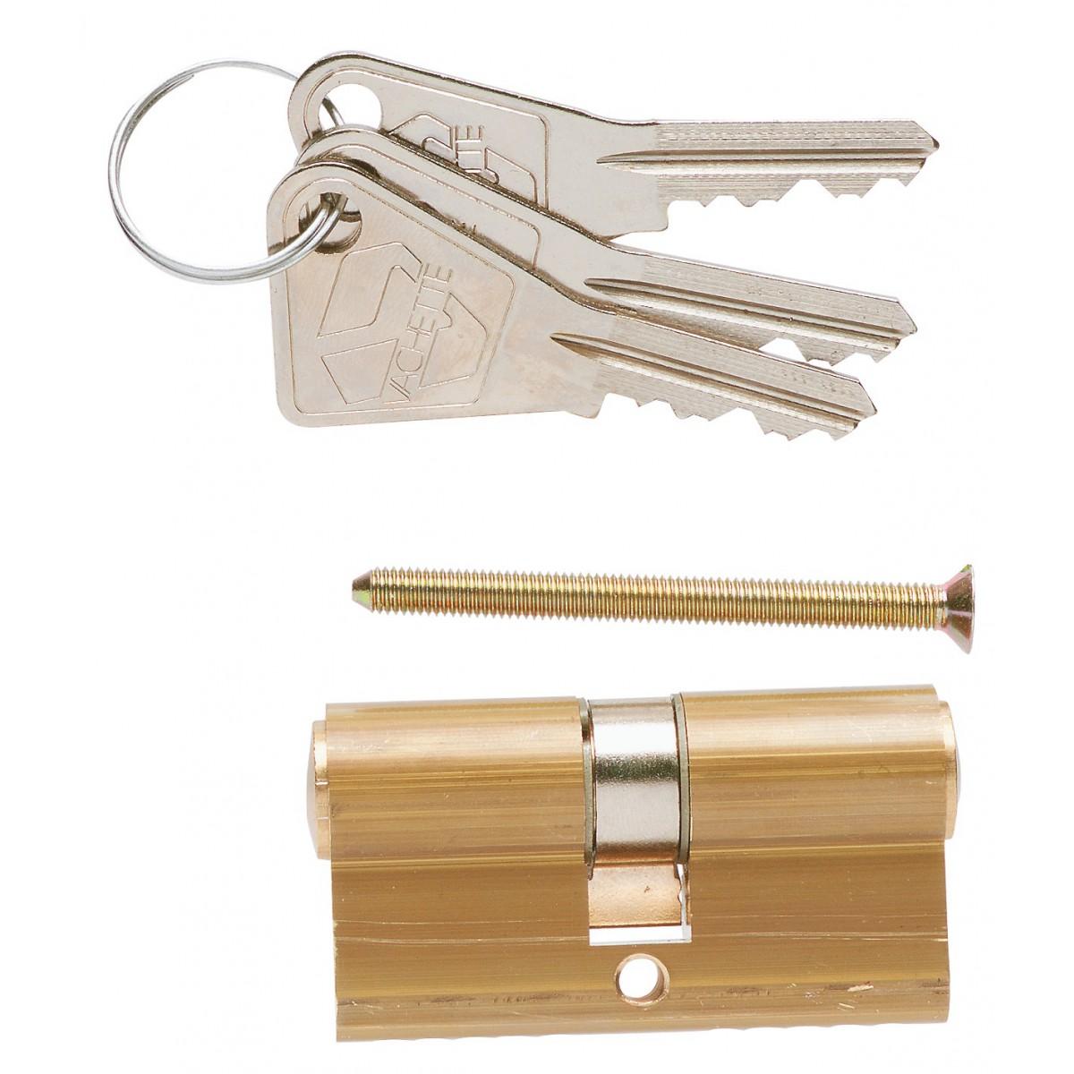 Cylindre de sureté fonction clé de sécours V5 Vachette - Dimensions 30 x 30 mm
