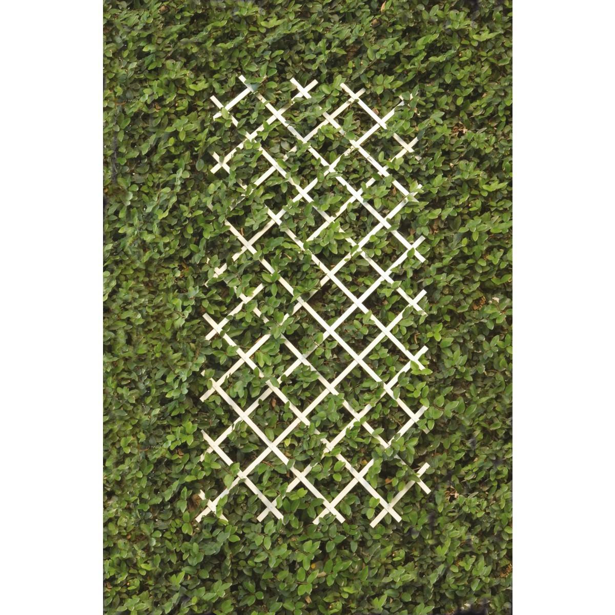 Treillis PVC extensible Catral - Blanc - Longueur 3 m - Hauteur 1 m