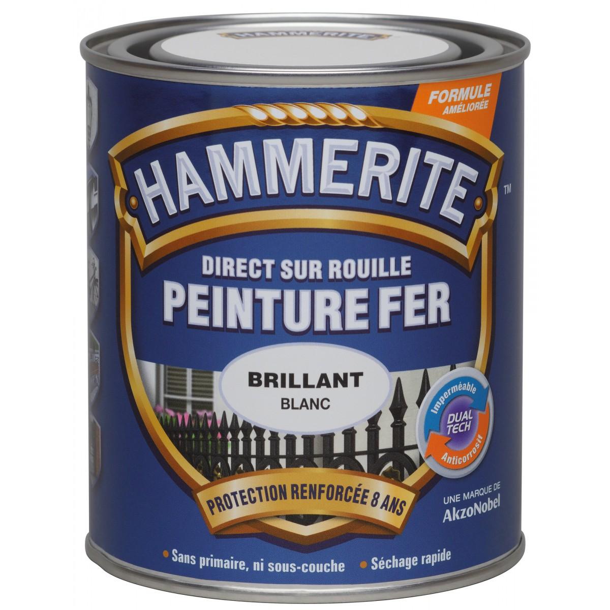 Peinture brillante Hammerite - Boîte 250 ml - Blanc