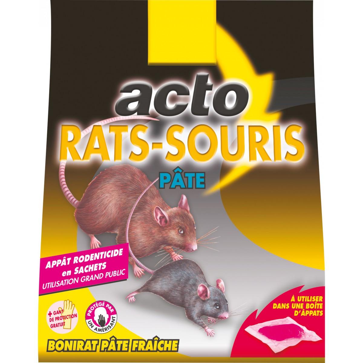 Homme Chat Rat Salle De Bain ~ rat souris p te acto 15 sachets de 10 g de raticide souricide