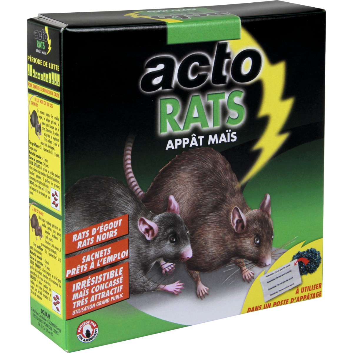 Homme Chat Rat Salle De Bain ~ rat app t ma s acto 7 sachets de 20 g de raticide 1848797 mon