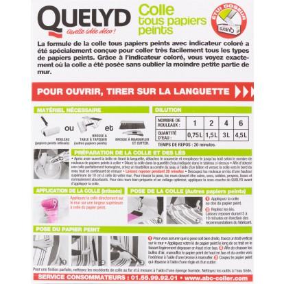 Colle tous papiers peints Quelyd - 300 g
