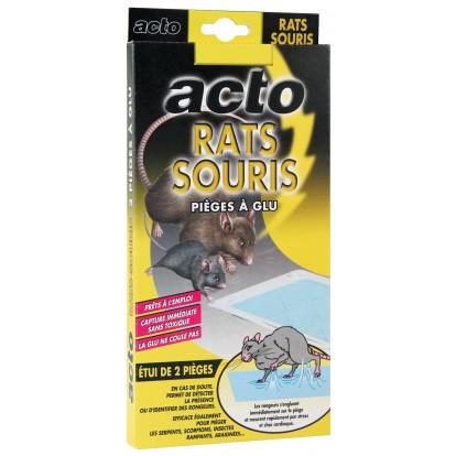 Pieges à glue rats et souris Acto - 2 pièges