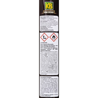 Insecticide guèpes & frelon KB Home Defense - Aérosol 400 ml