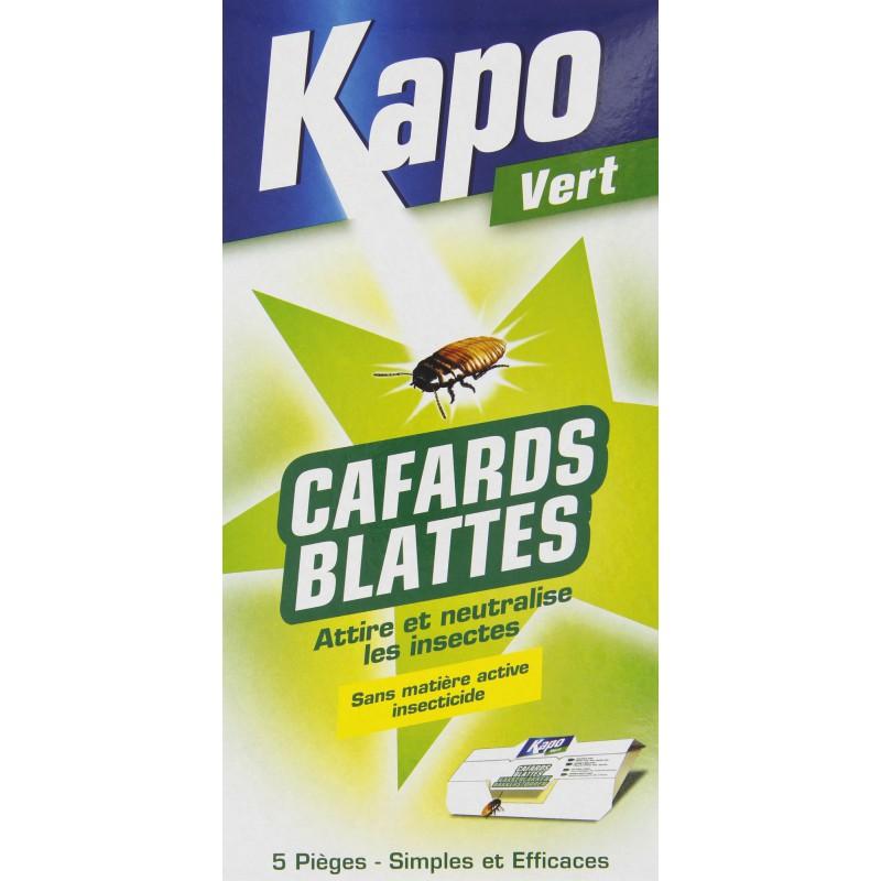 Cafards piège Kapo Vert - Vendu par 5
