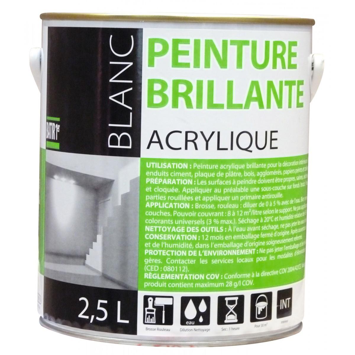 Peinture acrylique batir 1er bo te 2 5 l brillant for Peinture 100 acrylique exterieur