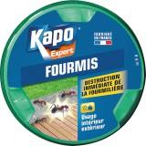 Boîte appât fourmis Kapo expert - 10 g