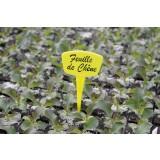 Étiquettes à planter - 15 cm