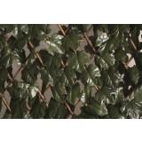 Treillis osier extensible à feuilles Catral - Longueur 2 m - Hauteur 1 m