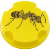 Anti-fourmis boîte Masy - Boîte de 10 g