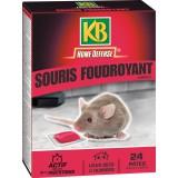 Pâte pour souris Action radicale KB Home Défense - Etui 24 x 10 g