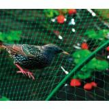 Filet de protection oiseaux - 8 m x 10 m